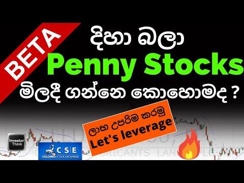 Beta Values හරහා Penny Stocks මිලදී ගන්නෙ කොහොමද? Let's leverage the portfolio with high Beta