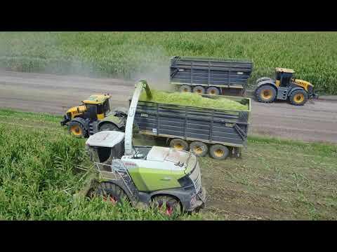 Robinson Farms 2018 Corn Silage Harvest