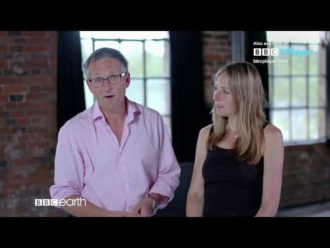 Is Your Brain Male or Female? - BBC Player