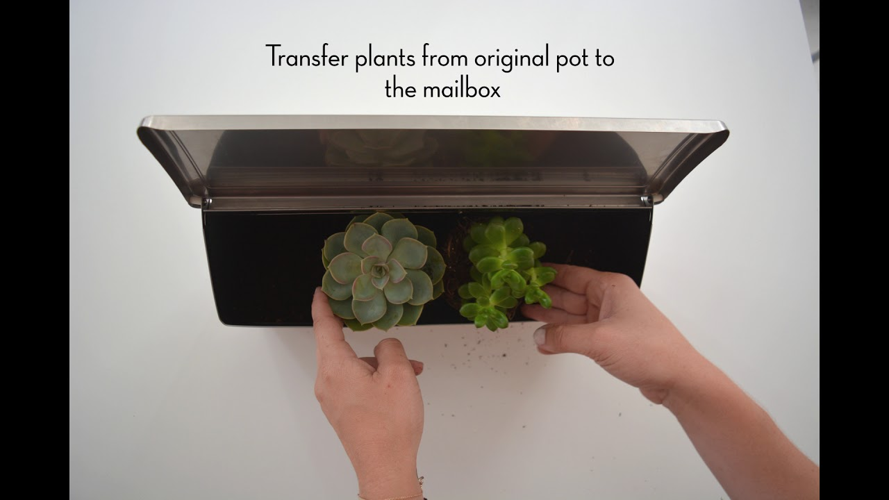 How To Make A Wall Mount Mailbox Planter Youtube