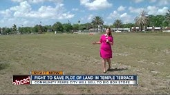 Temple Terrace pushing city to create downtown