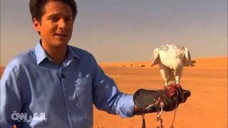 معركة بين صقر وطائرة بدون طيار في صحراء دبي    4-5-2016