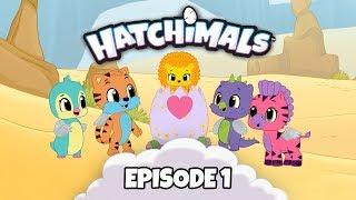 Hatchimals | Episode 1 | Meet Team Hatch! | TEAM HATCH YouTube Series