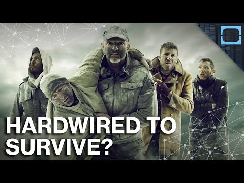 Is Human Survival Selfish? Fight Or Flight Explained.