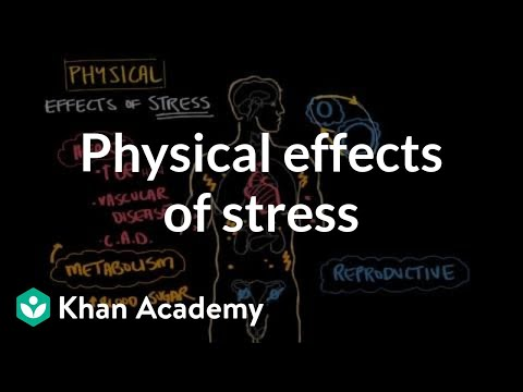 Physical effects of stress   Processing the Environment   MCAT   Khan Academy