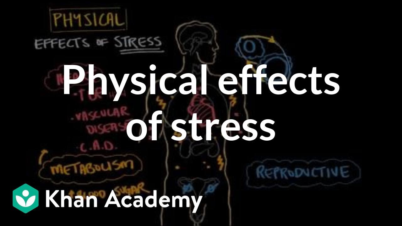 the effects of stress on the workplace environment Stress is an unavoidable and often valuable reaction to events in our lives whether it's at home or in the workplace, stress has the potential to impact our psychological well-being.