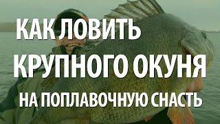 Рыба окунь на поплавочную удочку. Ловля крупного окуня(Рыболовный интернет-магазин: http://ali.pub/bctei Узнайте, как отлично рыба окунь ловится на поплавочную удочку...., 2015-07-09T15:30:10.000Z)