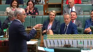 Bill Shorten asks Malcolm Turnbull if the government has asked the High Court if it has a majority