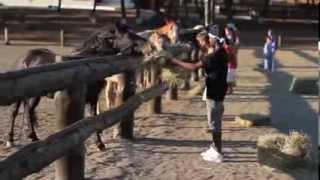 видео Детские лагеря в Греции