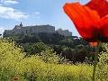 Chwała Bohaterom Bitwy o Monte Cassino (1944)
