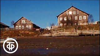 Поморы. О жителях побережья Белого моря (1983)