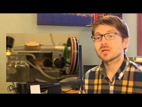 Video Abstract: Negligible energetic cost of sonar jamming in a bat-moth interaction