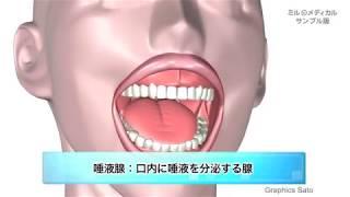 唾液腺炎、耳下腺炎/ミルメディカル 家庭の医学 動画版