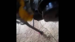 Poblema com vazamento na toreneirinha da caburador da biz 100