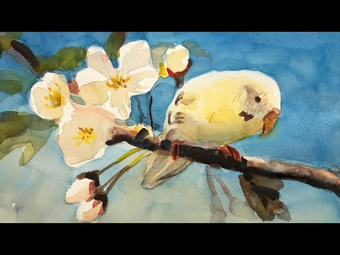 Watercolor painting of bird on apple blossom combining two photo references