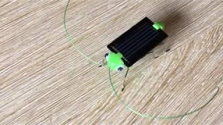 robot cào cào năng lượng mặt trời - đồ chơi hot