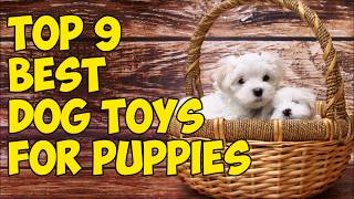 Top 9 Best Dog Toys For Puppies in 2018