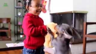 Крадіжка іграшки у дитини