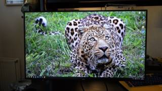 dell UltraSharp U2717DA 2560x1440 IPS 60Hz monitor review - By TotallydubbedHD
