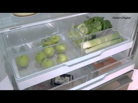 Fisher & Paykel Goliath American Fridge Freezer RF540ADUSX4 From TheWrightBuy