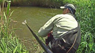 Это была чудовищная ОШИБКА! Рыбалка на небольшой речушке со спиннингом