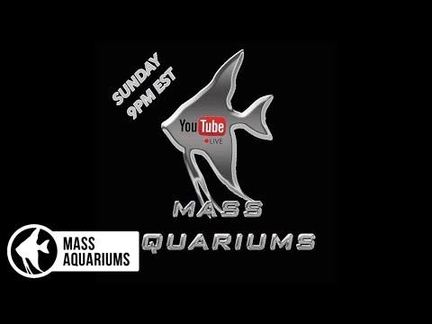 MASS Aquariums Sunday Night Live!