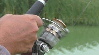 Рыбалка на закидушки