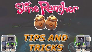 How To Get Wild Honey In Slime Rancher | Slime Rancher Tips And Tricks