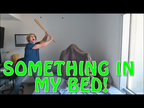 Thumbnail: THERE'S SOMETHING IN MY BED!