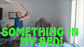 THERE'S SOMETHING IN MY BED!