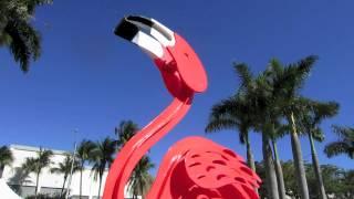 Coconut Grove Art  Festival ~ Miami, Florida