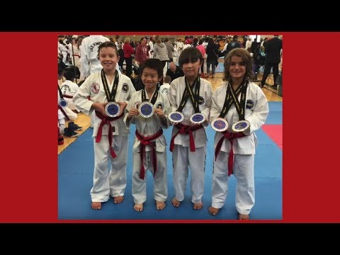 Pro Martial Arts Taekwon-Do - Mississauga, Toronto GTA