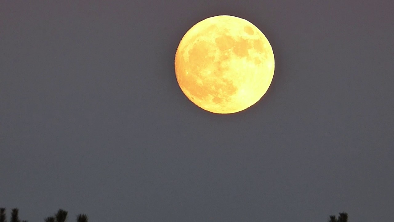 What Is the Beaver Moon? When, Where and How to Watch the 'Supermoon'