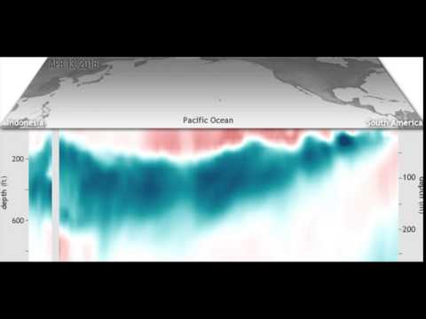 Sub-Sea Surface Temps tropical Pacific March, April May 2016