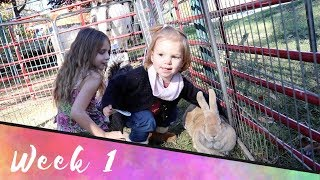 Toddler LOVES ALL the animals! Vlog Week 1