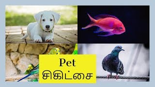 Pet Therapy for mental health | Tamil | Relax Tamila