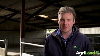 Alan Dillon explains the importance of good-quality silage
