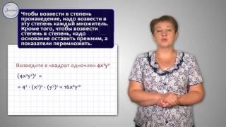 Алгебра 7 Умножение одночленов  Возведение в степень