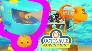 The Octonauts Adventure: Shellington and the Sea Urchin
