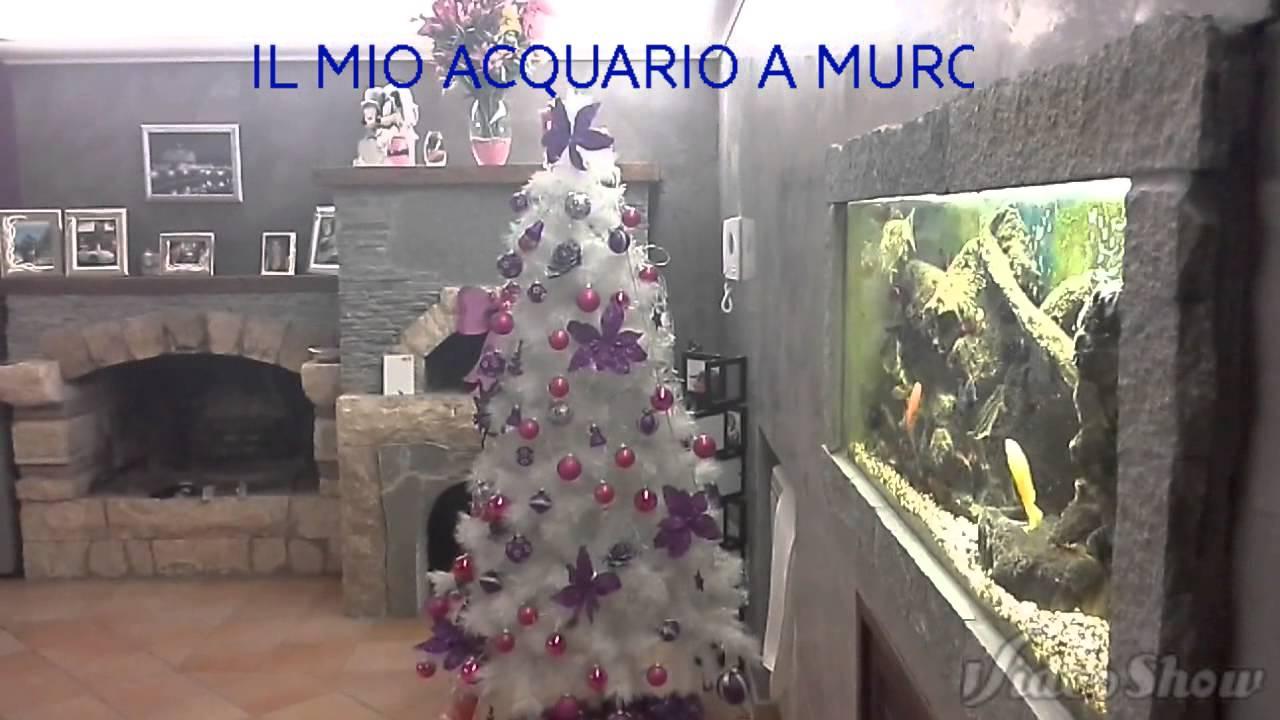 acquario a muro - youtube