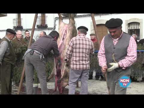 Día de la Matanza en Alcaracejos 2012