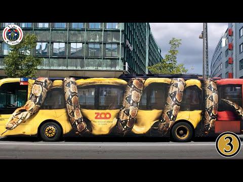25 Hilarious Custom Car Spray Jobs | The Craziest Car Paint in the World |
