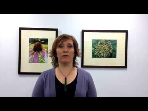 Introduction to Western Herbal Medicine workshop