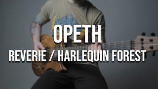 Opeth - Reverie / Harlequin Forest (full instrumental cover)