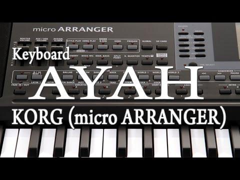 Keyboard AYAH- KORG micro ARRANGER