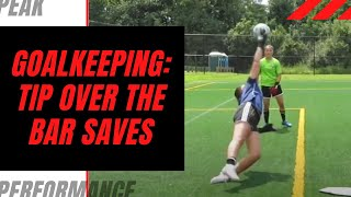 Goalkeeper Training: Tipping Over the Bar
