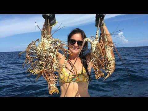Snorkeling and Lobstering- Ft Lauderdale, Florida's Most Beautiful Reefs!