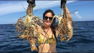 Snorkeling and Lobstering- Ft Lauderdale Floridas Most Beautiful Reefs