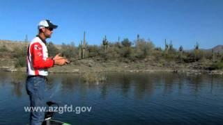Bass fishing - Pitching vs flipping