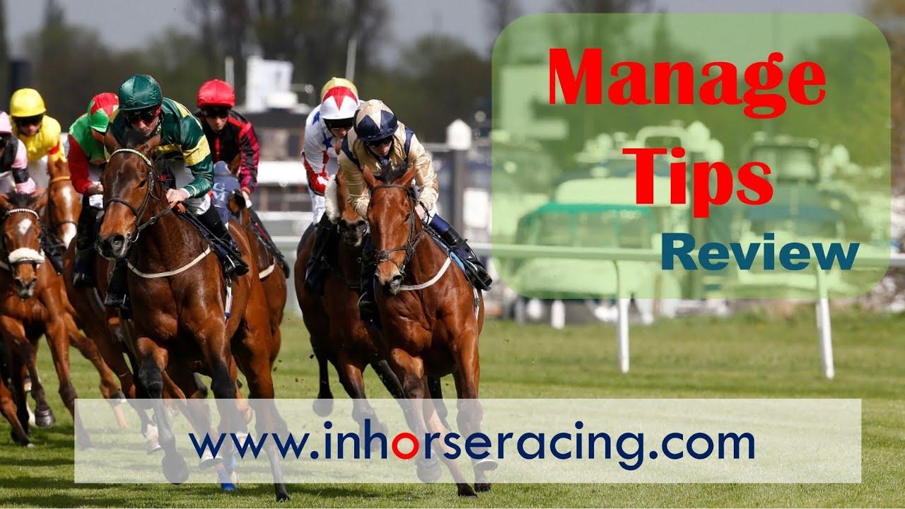 Guindy horse race betting terminology highlow binary options login